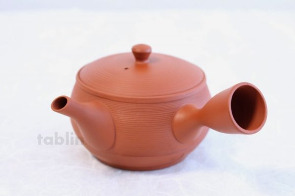 Photo2: Tokoname YT ware Japanese tea pot Gyokko ceramic tea strainer red syudei 300ml
