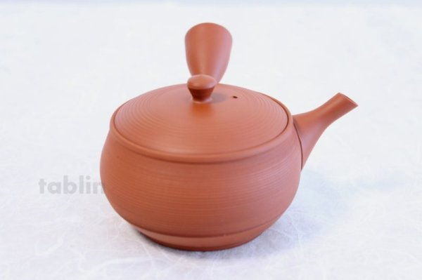 Photo4: Tokoname YT ware Japanese tea pot Gyokko ceramic tea strainer red syudei 300ml