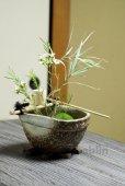 Photo10: Shigaraki pottery Japanese vase flower arrangement Ikebana tsukubai oribe H9cm