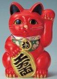 Photo8: Japanese Lucky Cat Tokoname ware YT Porcelain Maneki Neko koban left red H25cm