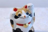 Japanese Lucky Cat Kutani yaki ware Porcelain Maneki Neko Ryote mike H 11.8cm