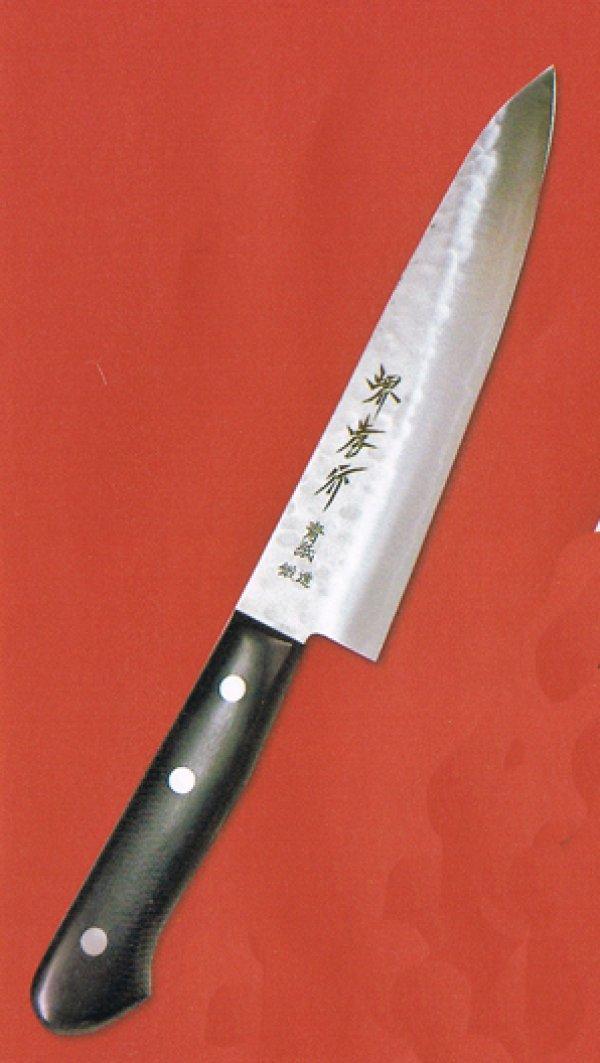Photo2: SAKAI TAKAYUKI Aogami warikomi Blue2 steel hammered any type