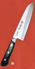 Photo5: SAKAI TAKAYUKI Aogami warikomi Blue2 steel hammered any type