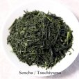 Photo1: Tokusen Sencha High class Japanese green tea in Tsuchiyama Shiga 100g (1)