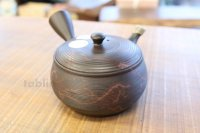 Tokoname YT ware Japanese tea pot Gyokko ceramic tea strainer yohen syudei 300ml