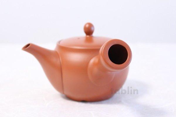 Photo5: Tokoname yaki ware Japanese tea pot morimasa red syudei ceramic tea strainer 360ml