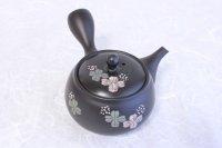 Tokoname yaki ware Japanese tea pot Shujyu lf ceramic tea strainear 280ml