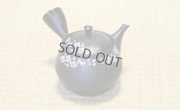 Photo1: Tokoname ware Japanese tea pot kyusu ceramic strainer YT Hokuryu in plum 300ml