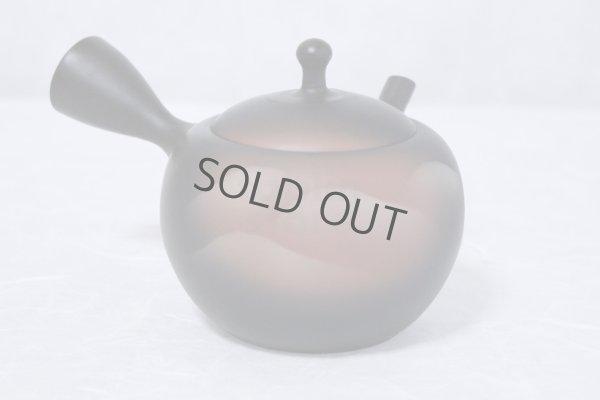 Photo2: Tokoname ware Japanese tea pot kyusu ceramic strainer YT Shoryu yamakasumi 340ml