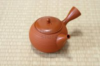 Tokoname Japanese tea pot kyusu Gyokko pottery tea strainer shudei red ma 300ml