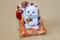 Japanese Lucky Cat Kutani Porcelain Maneki Neko oval gold coin,gavel H18cm