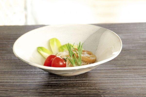 Photo1: Shigaraki pottery Japanese Serving bowl hakusui washoku 20cm