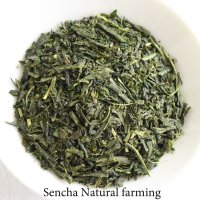 Natural farming Premium Sencha Japanese green tea Watarai Ise 100g