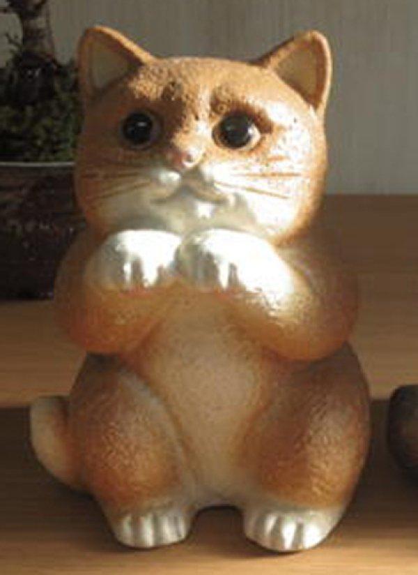 Photo3: Shigaraki pottery Japanese figurine neko Cute cat cha H 18cm
