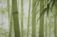 Photo3: Noren CSMO Japanese door curtain bamboo green 85 x 170cm (3)