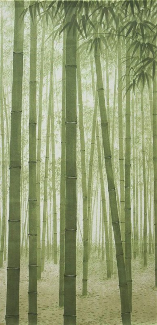Photo2: Noren CSMO Japanese door curtain bamboo green 85 x 170cm