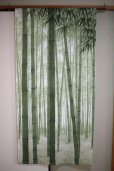 Photo1: Noren CSMO Japanese door curtain bamboo green 85 x 170cm (1)