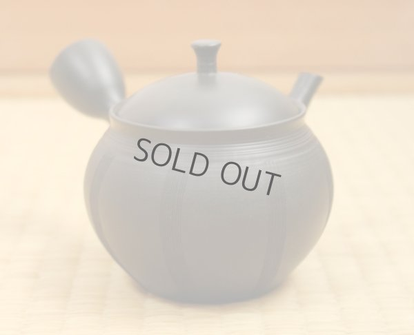 Photo1: Tokoname Japanese tea pot Hokuryu ceramic tea strainer nota black 270ml