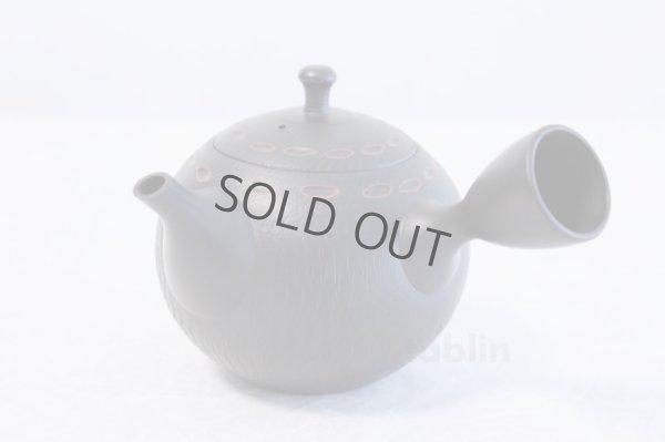 Photo1: Tokoname ware Japanese tea pot kyusu ceramic strainer YT Hokuryu birishu 360ml
