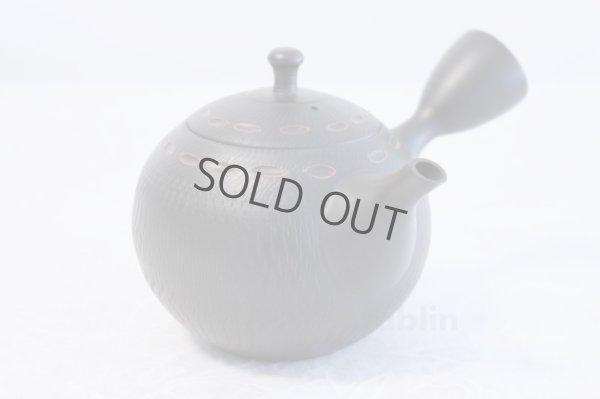 Photo2: Tokoname ware Japanese tea pot kyusu ceramic strainer YT Hokuryu birishu 360ml