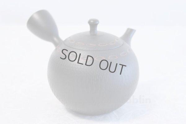 Photo3: Tokoname ware Japanese tea pot kyusu ceramic strainer YT Hokuryu birishu 360ml