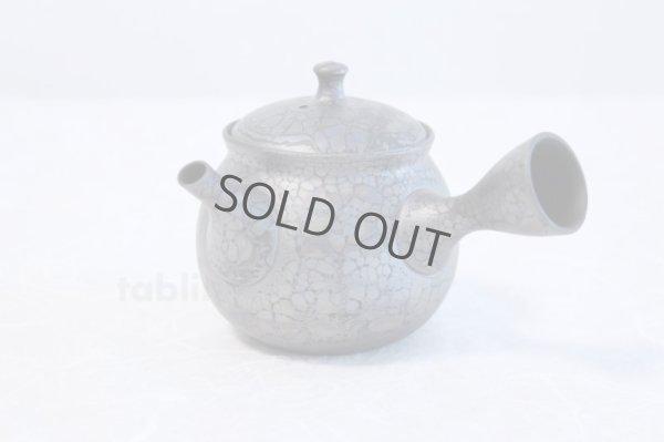 Photo1: Tokoname yaki ware Japanese tea pot Shoryu Tenmokuk ceramic tea strainer 200ml