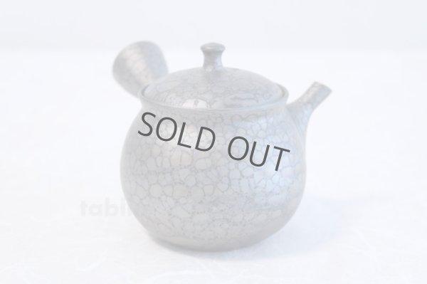 Photo3: Tokoname yaki ware Japanese tea pot Shoryu Tenmokuk ceramic tea strainer 200ml