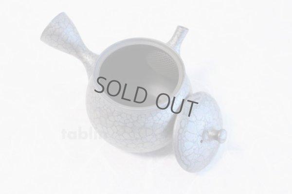 Photo5: Tokoname yaki ware Japanese tea pot Shoryu Tenmokuk ceramic tea strainer 200ml