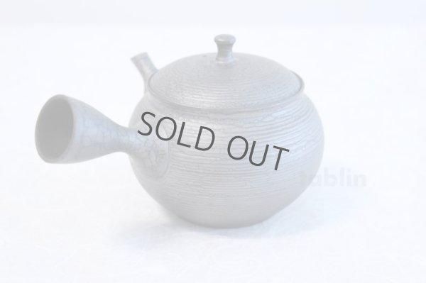 Photo2: Tokoname ware Japanese tea pot kyusu ceramic strainer YT Shoryu tenmoku 390ml
