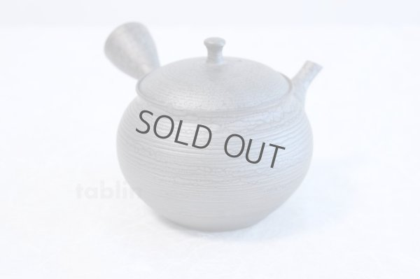 Photo1: Tokoname ware Japanese tea pot kyusu ceramic strainer YT Shoryu tenmoku 390ml