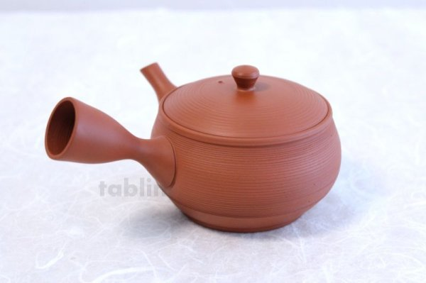 Photo3: Tokoname YT ware Japanese tea pot Gyokko ceramic tea strainer red syudei 300ml