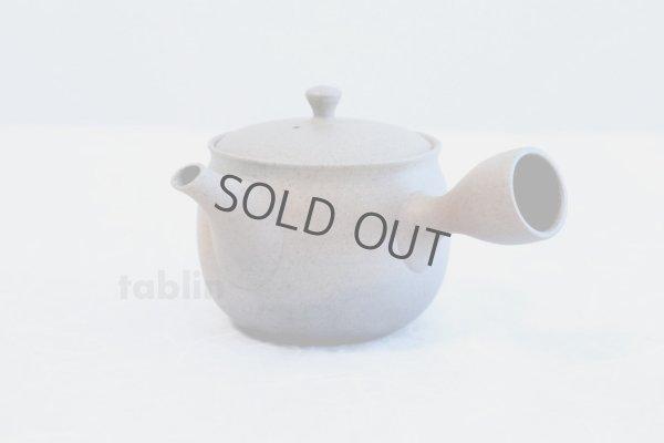 Photo2: Tokoname ware Japanese tea pot Gyokko ceramic tea strainer yakishime ko ma 250ml