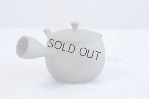 Photo3: Tokoname ware Japanese tea pot Gyokko ceramic tea strainer yakishime ko ma 250ml