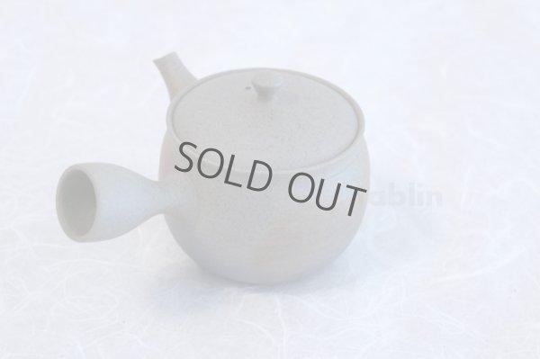 Photo4: Tokoname ware Japanese tea pot Gyokko ceramic tea strainer yakishime ko ma 250ml