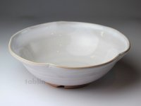Hagi ware Japanese Serving bowl Shiroito White-string W215mm